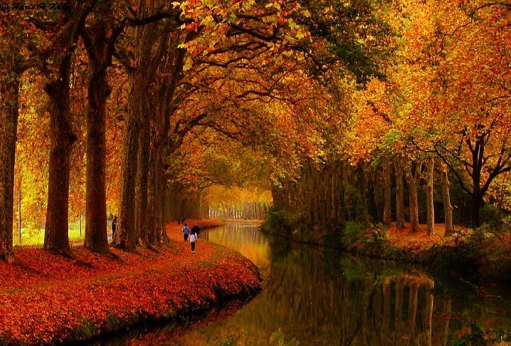 组图:镜头下美丽的世界 世界各地的风景照 no.001