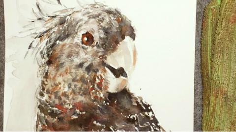 【黑黑的球】水彩画,第十七期.简单画一只鸟