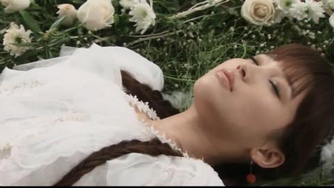【金莎】星月神话 - acfun弹幕视频网