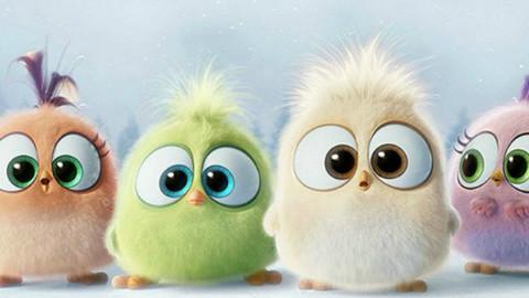 電影  提示 拖動播放器 《憤怒的小鳥》曝賀年短片 五只小小鳥嫩聲