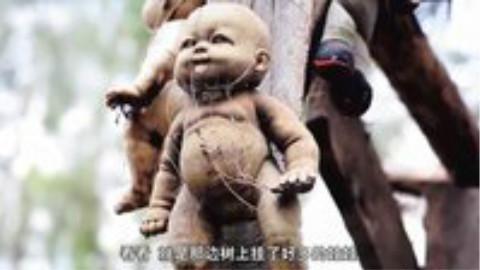 鬼娃娃岛的死婴寻仇记