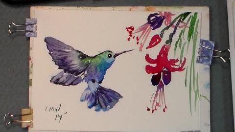 会画水彩画-画水彩蜂鸟